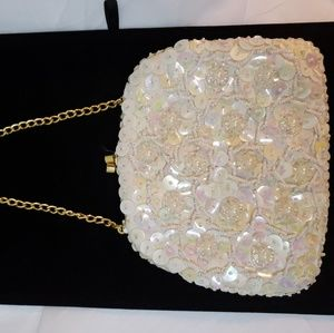 Beaded Evening Bag with Irridescent Sequins!